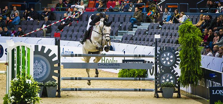 Bild på en häst som hoppar