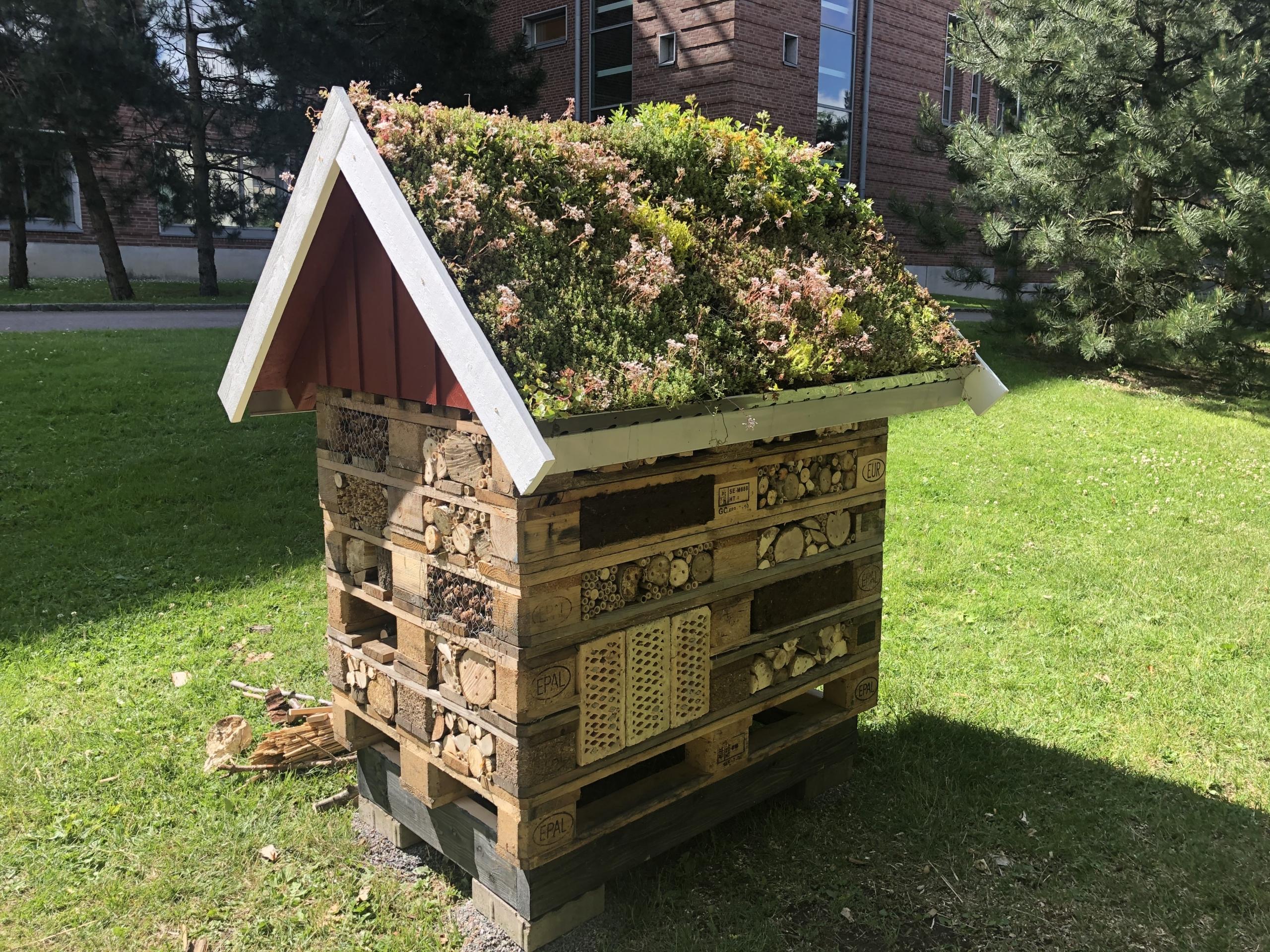 Bild på en Insektshotell